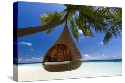 Sofa Hanging on a Tree on the Beach, Maldives, Indian Ocean-Sakis Papadopoulos-Stretched Canvas Print