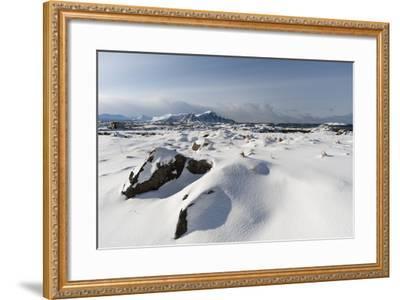 Andenes, Vesteralen Islands, Arctic, Norway, Scandinavia-Sergio Pitamitz-Framed Photographic Print