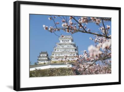 Himeji Castle, Himeji, Kansai, Honshu, Japan-Ian Trower-Framed Photographic Print
