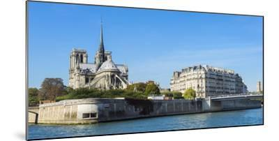 Notre-Dame Cathedral and Ile De La Cite, Paris, France, Europe-G & M Therin-Weise-Mounted Photographic Print