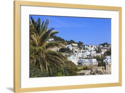 Palm Tree and Certosa Di San Giacomo (Monastery) with Skyline of Capri Town, Capri, Campania, Italy-Eleanor Scriven-Framed Photographic Print
