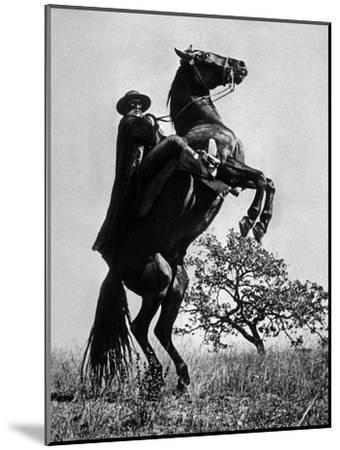 Le Signe De Zorro the Sign of Zorro De Norman Foster Et Lewis R. Foster Avec Guy Williams 1958--Mounted Photo