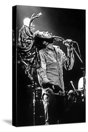Bob Marley En Concert De Reggae Au Roxy, Los Angeles Le 26 Mai 1976--Stretched Canvas Print