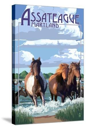 Assateague, Maryland - Pony Swim-Lantern Press-Stretched Canvas Print
