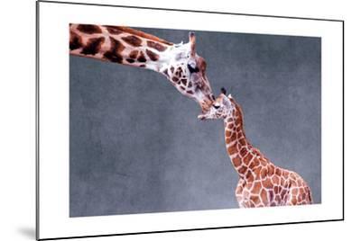 Giraffe and Calf-Lantern Press-Mounted Premium Giclee Print