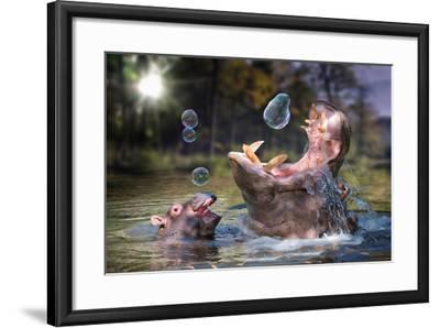 Hippos and Bubbles-Lantern Press-Framed Art Print