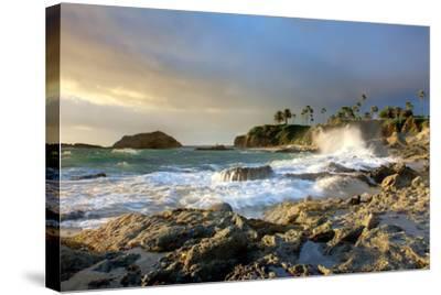 Rocky Coast and Palms-Lantern Press-Stretched Canvas Print