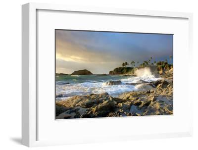 Rocky Coast and Palms-Lantern Press-Framed Art Print