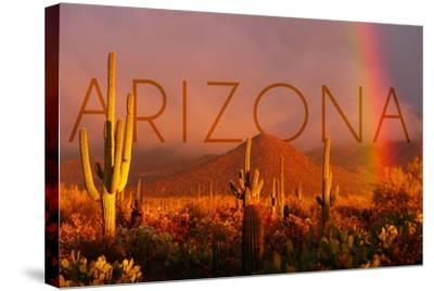Arizona - Cactus and Rainbow-Lantern Press-Stretched Canvas Print