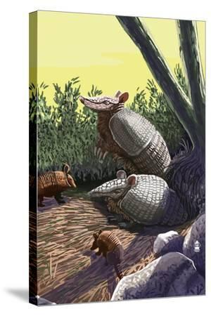 Armadillo Family-Lantern Press-Stretched Canvas Print