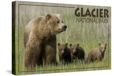 Glacier National Park - Grizzly Bear and Cubs-Lantern Press-Stretched Canvas Print