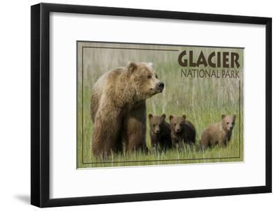 Glacier National Park - Grizzly Bear and Cubs-Lantern Press-Framed Art Print