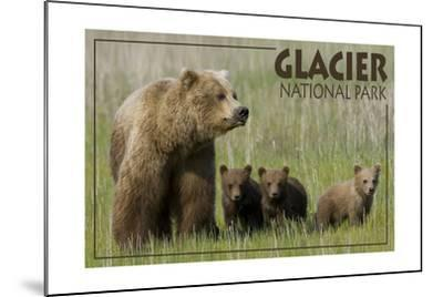 Glacier National Park - Grizzly Bear and Cubs-Lantern Press-Mounted Art Print
