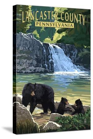 Lancaster County, Pennsylvania - Black Bears and Waterfall-Lantern Press-Stretched Canvas Print