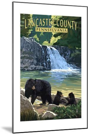 Lancaster County, Pennsylvania - Black Bears and Waterfall-Lantern Press-Mounted Art Print