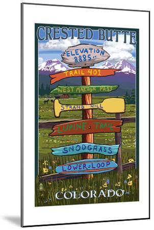 Crested Butte, Colorado - Destination Signpost-Lantern Press-Mounted Art Print