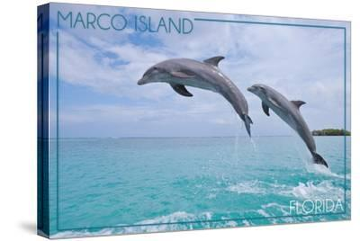 Marco Island, Florida - Jumping Dolphins-Lantern Press-Stretched Canvas Print