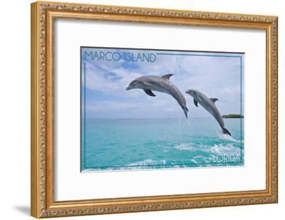 Marco Island, Florida - Jumping Dolphins-Lantern Press-Framed Art Print