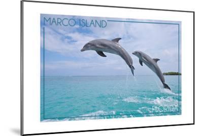 Marco Island, Florida - Jumping Dolphins-Lantern Press-Mounted Art Print