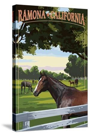 Ramona, California - Horse Pasture-Lantern Press-Stretched Canvas Print