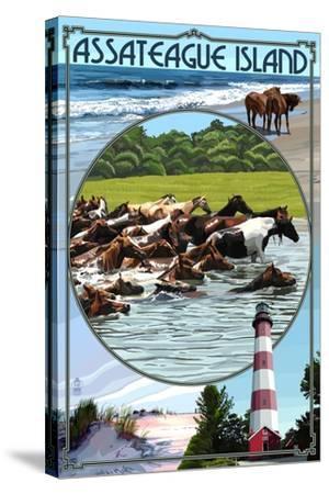 Assateague Island - Montage-Lantern Press-Stretched Canvas Print