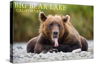 Big Bear Lake, California - Grizzly Bear with Tongue-Lantern Press-Stretched Canvas Print