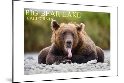 Big Bear Lake, California - Grizzly Bear with Tongue-Lantern Press-Mounted Art Print