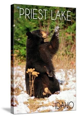 Priest Lake, Idaho - Bear Playing-Lantern Press-Stretched Canvas Print
