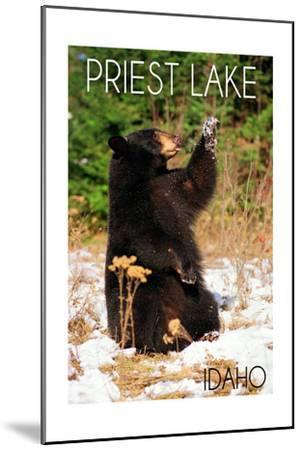 Priest Lake, Idaho - Bear Playing-Lantern Press-Mounted Art Print