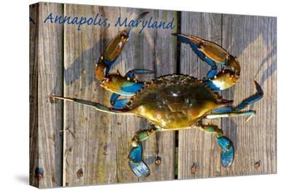 Annapolis, Maryland - Blue Crab on Dock-Lantern Press-Stretched Canvas Print