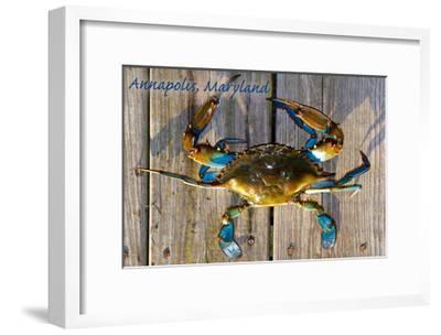 Annapolis, Maryland - Blue Crab on Dock-Lantern Press-Framed Art Print