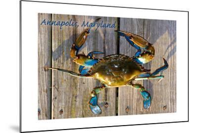 Annapolis, Maryland - Blue Crab on Dock-Lantern Press-Mounted Art Print
