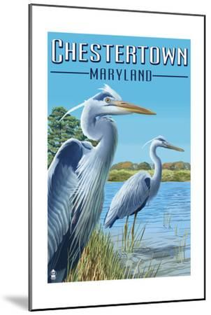 Chestertown, Maryland - Blue Herons in Marsh-Lantern Press-Mounted Art Print