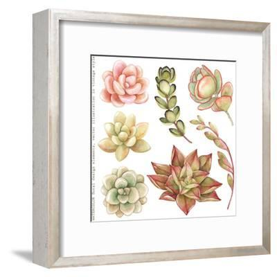 Watercolor Collection of Succulents and Kalanchoe for Your Design, Hand-Drawn Illustration.-Nikiparonak-Framed Art Print