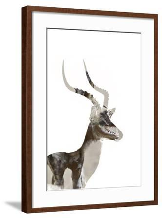 African Wild Dog - Male Impala-James Hager-Framed Photographic Print