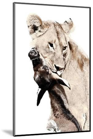 The Kill. A Lioness with a Blue Wildebeest Calf, Serengeti National Park, East Africa-James Hager-Mounted Premium Giclee Print
