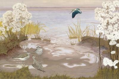 Bird on the Mud Flats of the Elbe, 1910-Friedrich Lissmann-Stretched Canvas Print
