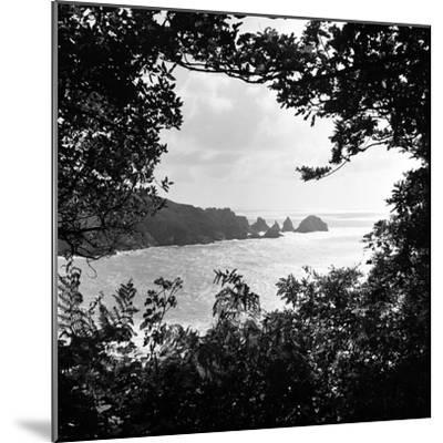 A View of Jerbourg Point 1965-Staff-Mounted Photographic Print
