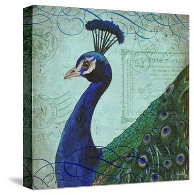 Parisian Peacock II-Elizabeth Medley-Stretched Canvas Print