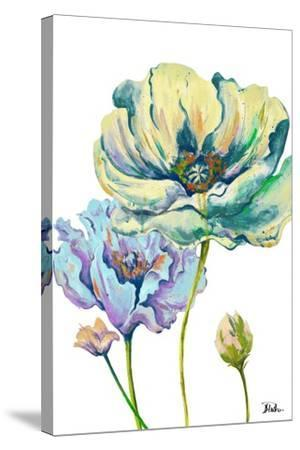Fresh Colored Poppies II-Patricia Pinto-Stretched Canvas Print