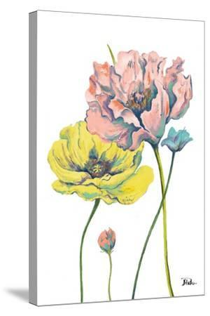 Fresh Colored Poppies I-Patricia Pinto-Stretched Canvas Print
