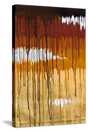 Summer Rain I-Patricia Pinto-Stretched Canvas Print
