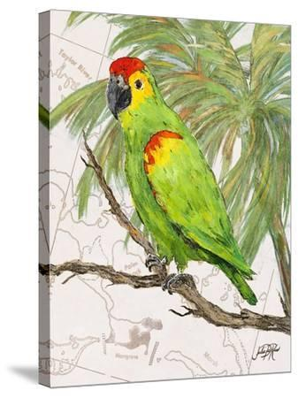 Another Bird in Paradise II-Julie DeRice-Stretched Canvas Print