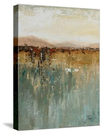 Antique Contemporary I-Patricia Pinto-Stretched Canvas Print