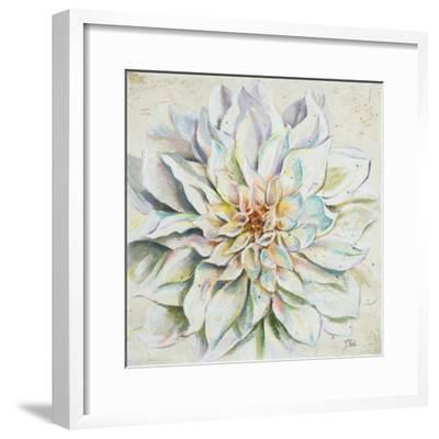 White Dahlias II-Patricia Pinto-Framed Premium Giclee Print
