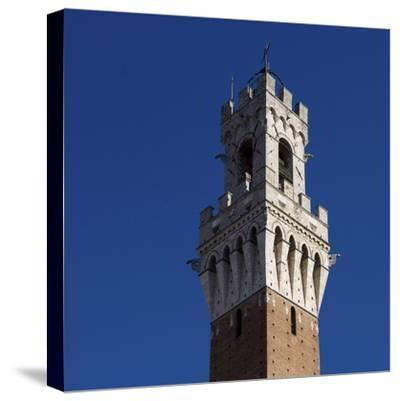 Siena Architectural Detail of Crenellated Tower-Mike Burton-Stretched Canvas Print