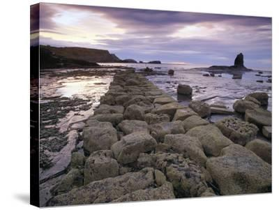 Saltwick Bay Is South of Whitby and the Distinctively Shaped Black Nab Rock- LatitudeStock-Stretched Canvas Print