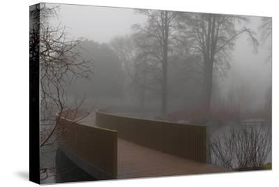 Royal Botanic Gardens, Kew, London. the Sackler Crossing in Fog with Winter Trees-Richard Bryant-Stretched Canvas Print