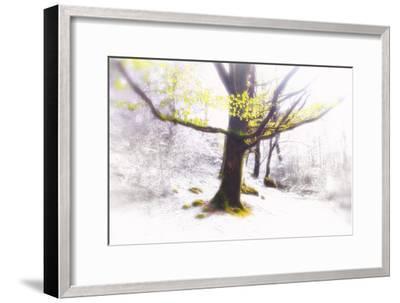 Ashes of Time-Viviane Fedieu Daniel-Framed Photographic Print