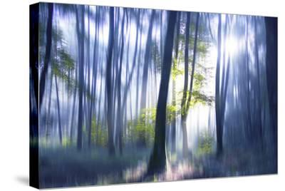 Solitude Bleue-Viviane Fedieu Daniel-Stretched Canvas Print